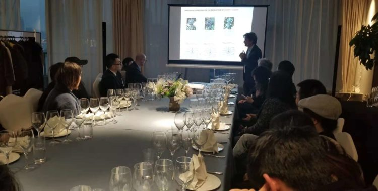 The Italian Way of Wine: Informative & Emotional Experience - Wine Tasting