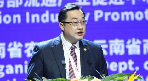 Interview with Shu Yang, GM of Yunnan International Coffee Exchange