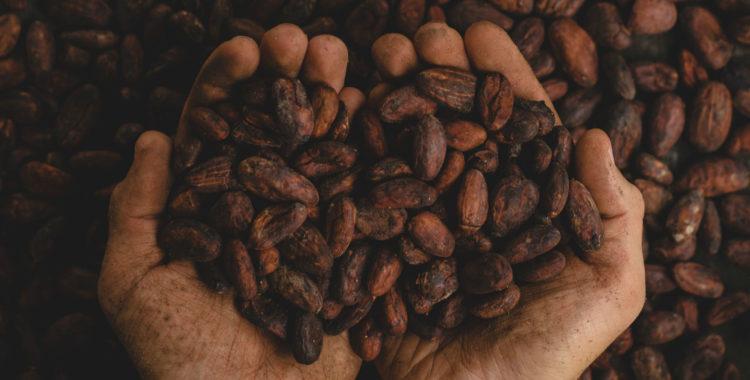 咖啡在中国的发展壮大