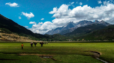 Reinventing tourism companies in Western China - The case of Lijiang Xintuo Ecotourism